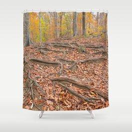 Autumn Avalon Forest Trail Shower Curtain