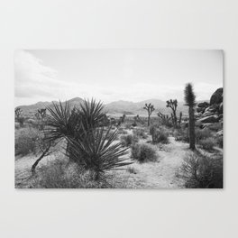 The Place to be in Joshua Tree Canvas Print