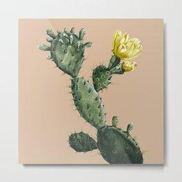 Cactus on Terra Cotta Metal Print