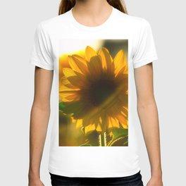 Sunflower love T-shirt