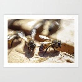 2 Bee or Not 2 Bee Art Print