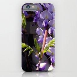 Sproing Has Sprung! iPhone Case