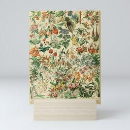 french vintage 1800s adolphe millot Mini Art Print