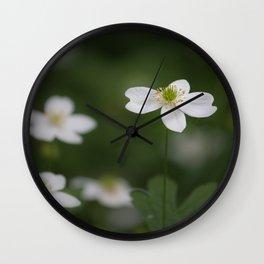 Canada anemone Wall Clock