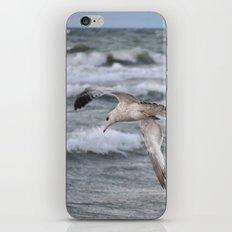 Lighter than Air iPhone & iPod Skin