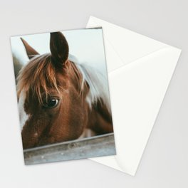 crystal the pony Stationery Cards