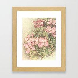 Satomi Dogwood, Pencil Sketch II Framed Art Print