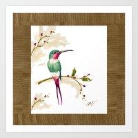 hummingbird Art Prints featuring hummingbird by Ariadne