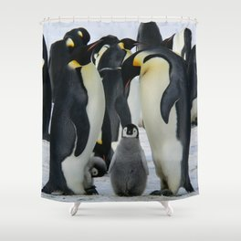 La Pinguin Familia Shower Curtain