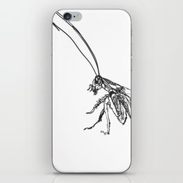 Cucaracha #6 iPhone Skin