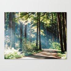 Campsite trails  Canvas Print