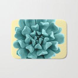 Cyan Succulent Plant on Yellow Bath Mat