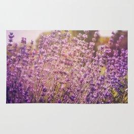 Enchanting Lavender Rug