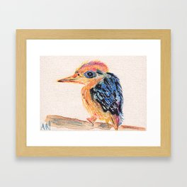Bird in Watercolor Pencil Framed Art Print