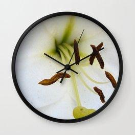 The feelers Wall Clock
