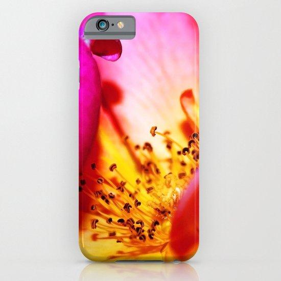 Rose Blush iPhone & iPod Case