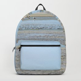 A flock of seagulls in the bay Backpack