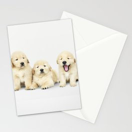 Portrait Of Golden Retriever Puppies Stationery Cards