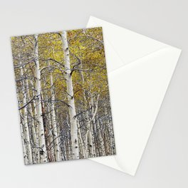 Birch Trees in Autumn Stationery Cards