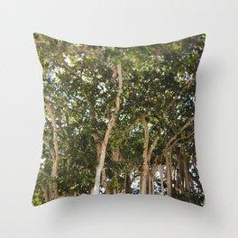 The Banyans of Sarasota Throw Pillow