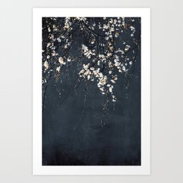 Blossoms on Blue Art Print