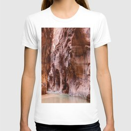 The Narrows Zion National Park Utah T-shirt