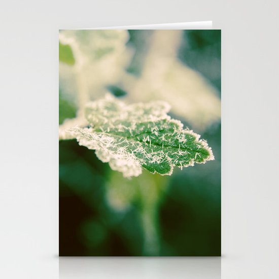 Icy Needles Stationery Cards