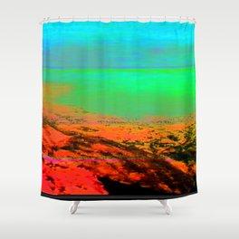 X2785-0017 (2013) Shower Curtain
