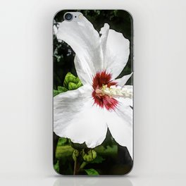 The White Hibiscus Flower iPhone Skin