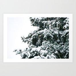 Snowy Great Blue Heron Art Print