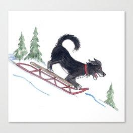 Dog Sledding 1 Canvas Print