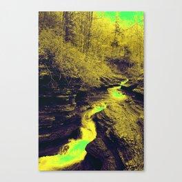Buttermilk Canvas Print