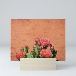 Cacti in Bloom - 5 Mini Art Print