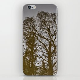 Reflection #1 - Chester canals iPhone Skin