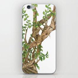 Twisting woods iPhone Skin