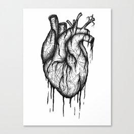 Bleeding Heart - A3 Ink illustration Canvas Print