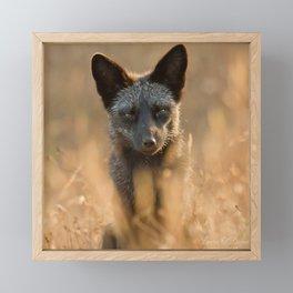 Grandma's Cove Fox Framed Mini Art Print