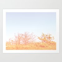 Soft orangina Art Print