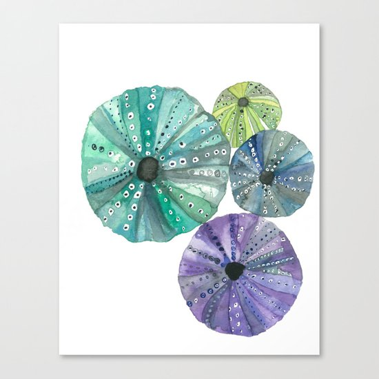 Hawaiian Sea No. 2 Sea Urchins Canvas Print