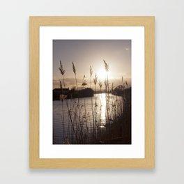 still... Framed Art Print