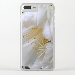 Unusual flower - Queen of the Night (Epiphyllum Oxypetalum) Clear iPhone Case