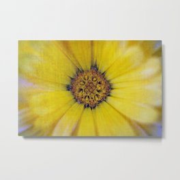 Find out where joy resides... Metal Print