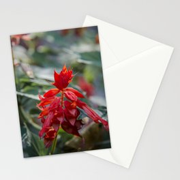 Fiercely Red Stationery Cards