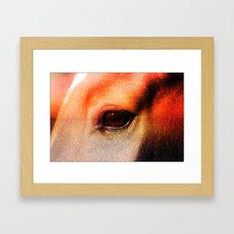 An Equine Sunset Framed Art Print