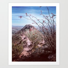 Scenic Camelback Mountain Art Print