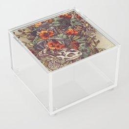Robo Tortoise Acrylic Box