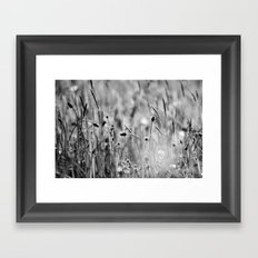 Once in the meadow - photography black&white Framed Art Print