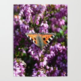 purple heather posters society6
