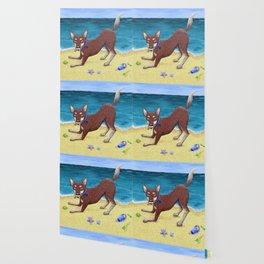 Red Dog Playing Wallpaper