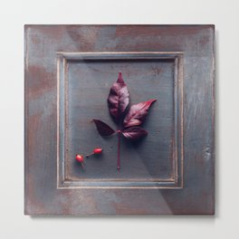 Wooden frame with an dried leaf Metal Print
